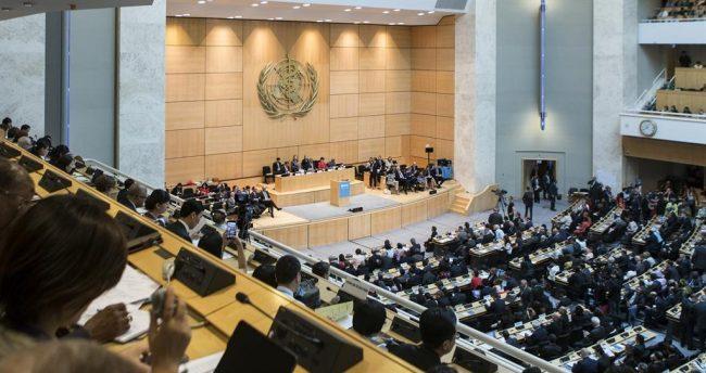 Dünya Sağlık Örgütü tarihinde 72 yıl sonra bir İlk… Dünya Sağlık Asamblesi ilk kez sanal ortamda toplandı.